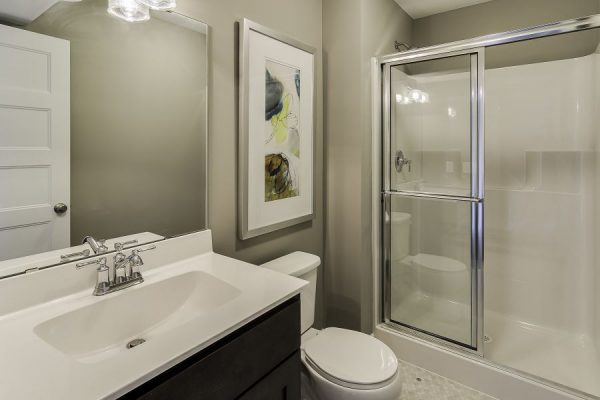 24_Lower_Level_Bathroom-778-1000-600-80
