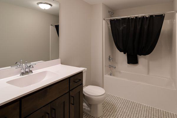 23 Lower Level Bathroom