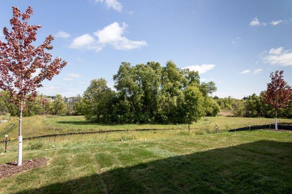 26 Backyard View